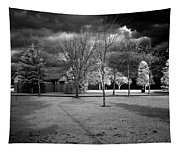 City Beach In Infrared Tapestry