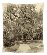 City Park New Orleans - Sepia Tapestry