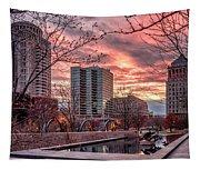 Citygarden Gateway Mall St Louis Mo Dsc01485 Tapestry