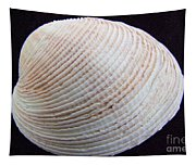 Clam Shell Tapestry