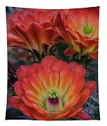 Claret Cup Cactus Flowers  Tapestry