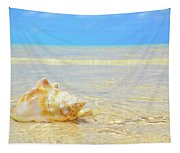 Clarity, Simplicity Tapestry