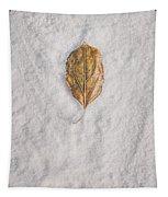 Clash Of Seasons Tapestry