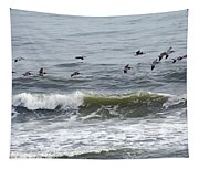 Classic Brown Pelicans Tapestry