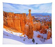Classic Bryce Tapestry