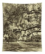 Classic Southern Beauty - Evergreen Plantation -sepia Tapestry
