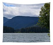 Clear Lake View Tapestry