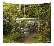 Clear Mountain Stream Tapestry