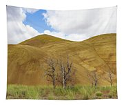 Clear Sky At Painted Hills Tapestry