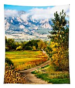 Clearly Colorado Tapestry