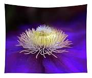 Clematis Aglow Tapestry