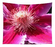 Clematis Bloom.. Tapestry