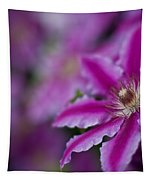 Clematis Dream Tapestry