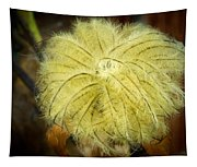 Clematis Flower Head In Fall Tapestry