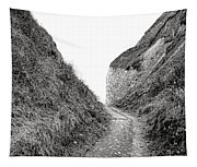 Cliff Cleavage Tapestry