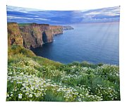Cliffs Of Moher, Co Clare, Ireland Tapestry
