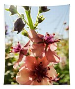 Close-up Of Pink Mullein Flowers Tapestry