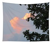 Cloud And Blue Sky Tapestry