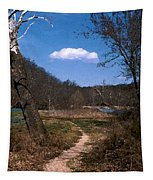 Cloud Destination Tapestry