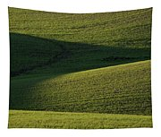 Cloud Shadows On New Growing Crop Tapestry