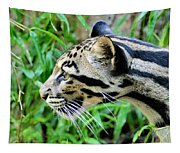 Clouded Leopard In The Grass Tapestry
