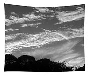 Clouds Over Florida Tapestry