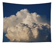 Cloudy Day Tapestry