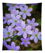 Clump Of Springtime Tapestry