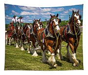 Budweiser Clydesdale Horses Tapestry