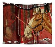 Clydesdale Ripped Tapestry