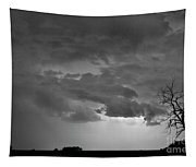 Co Cloud To Cloud Lightning Thunderstorm 27 Bw Tapestry