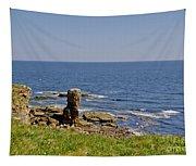 Coast. Seascape 3. Tapestry