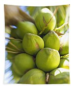 Coconut Bunch Tapestry