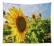 Colby Farms Sunflower Field Side Tapestry