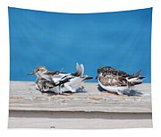 Cold Birds Tapestry