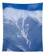 Cold Mountain Tapestry