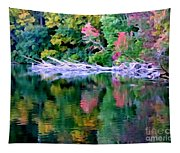 Cold Spring Harbor Reflections Tapestry