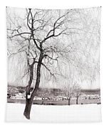 Coldness Tapestry