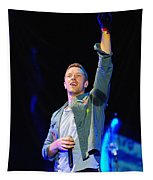 Coldplay8 Tapestry