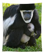 Colobus Monkey With Baby Tapestry