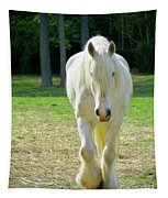 Colonial Horse In Williamsburg Tapestry