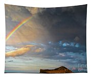 Color Of The Rain Tapestry