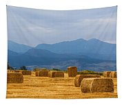 Colorado Agriculture Farming Panorama View Pt 2 Tapestry