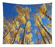 Colorado Aspen Tapestry