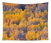 Colorado Autumn Trees Tapestry