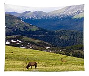 Colorado Elk Tapestry