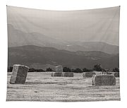 Colorado Farming Panorama View In Black And White Tapestry