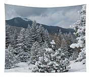 Colorado Foothills Winter Panorama Tapestry