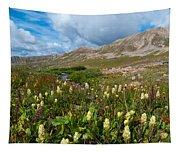 Colorado Late Summer Splendor Tapestry