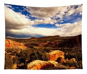 Colorado Mountain Splendor Tapestry